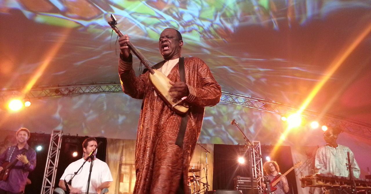 Cheick Hamala DIabate band in live perfmance